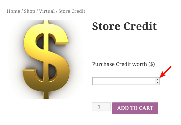 Purchase credit of any amount - front end